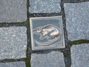 Pflasterstein mit Ratte in Hameln